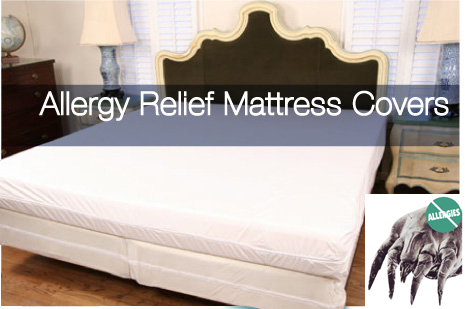 Reduce the Risk of Bedbugs and Allergies in Your Bedding and Mattress