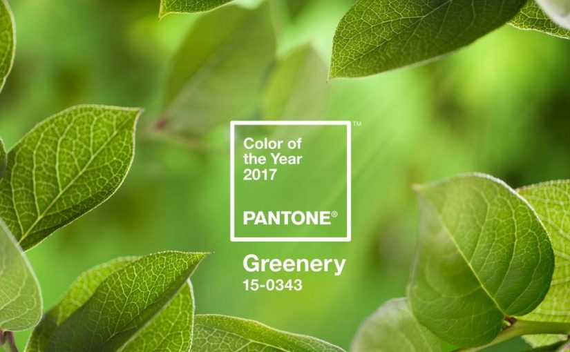2017 Pantone Color of the Year: Greenery
